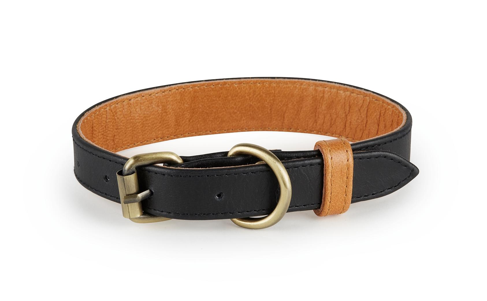 Hatteras Collar