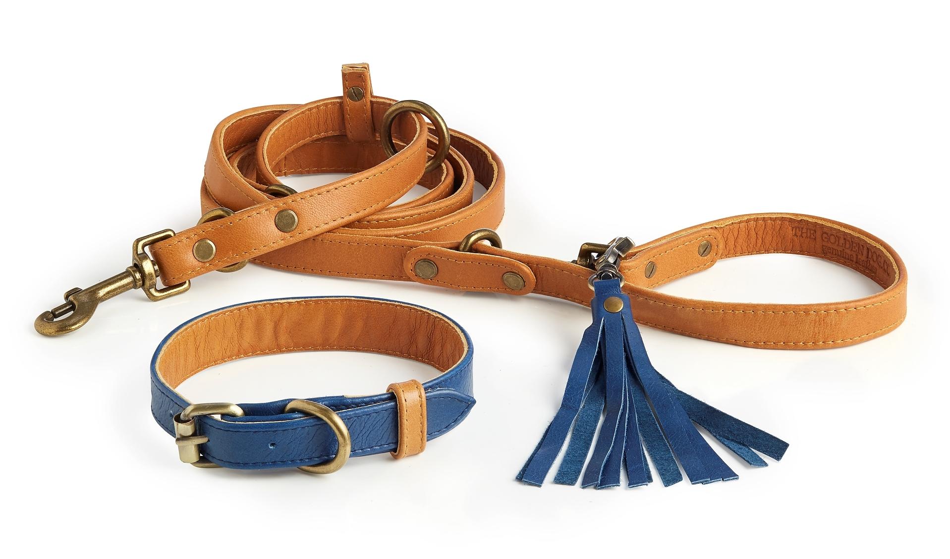 Beaufort Collar + Leash