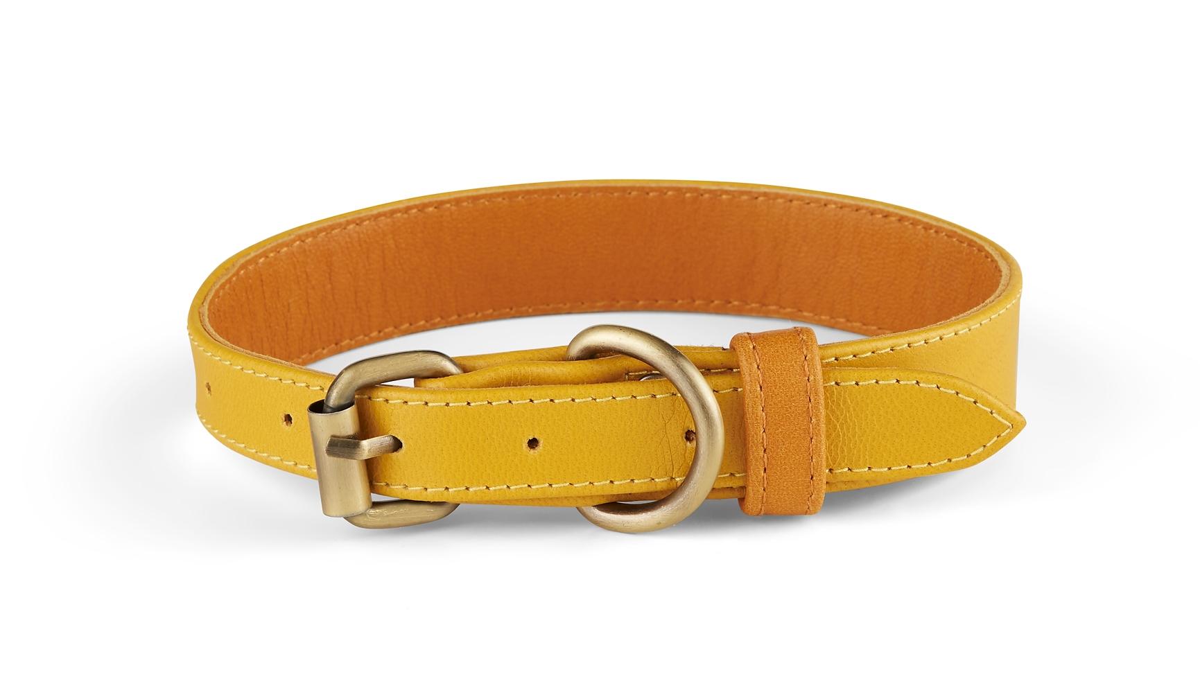 Holden Collar
