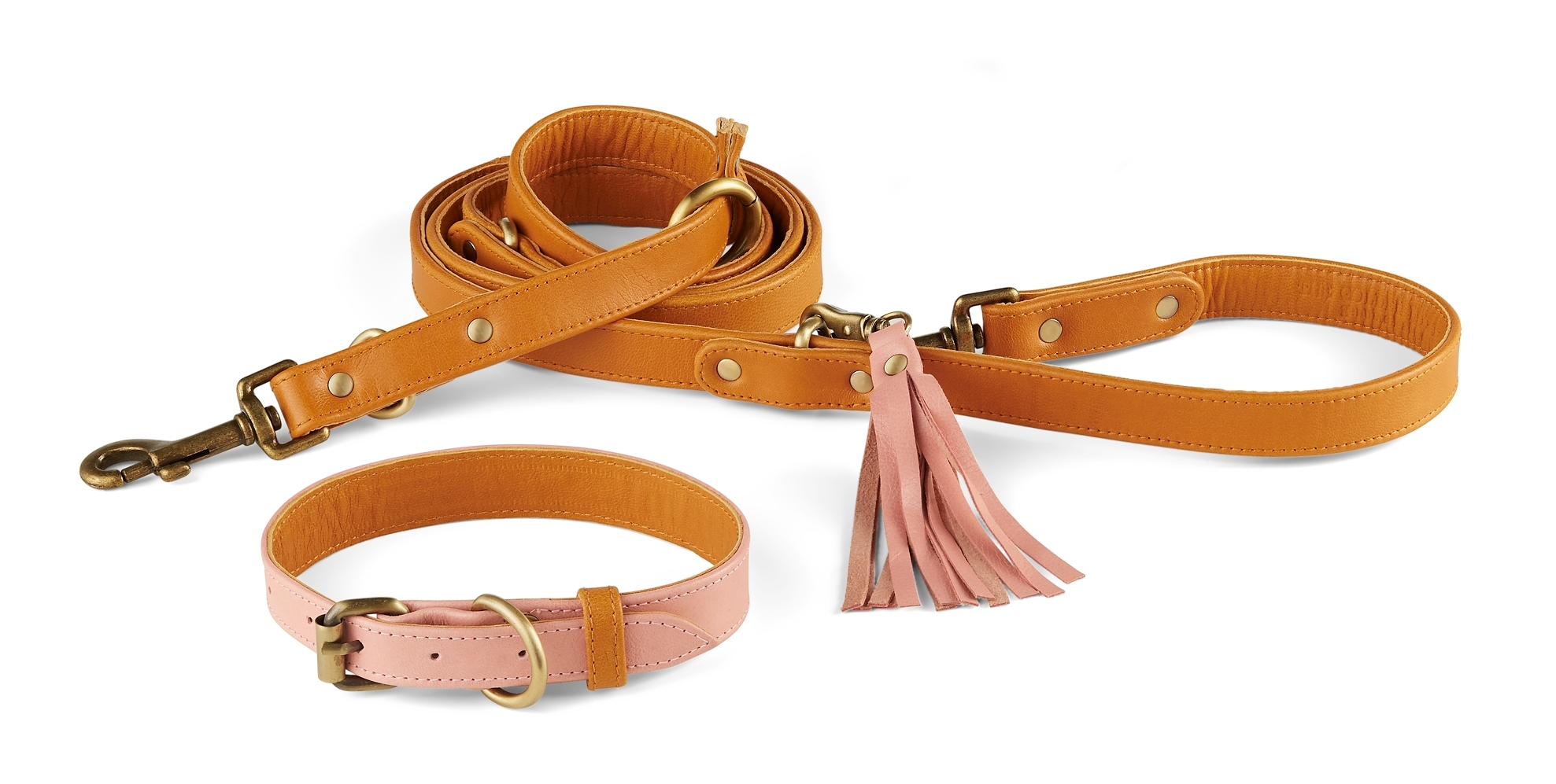 Santa Cruz Collar + Leash