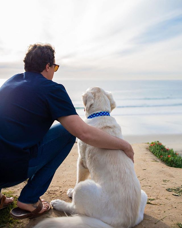Only the best for your best friend! . . . #GoldenDogCo #JackCEO #petpromise #quality #petproducts #staygolden #goldenadventures