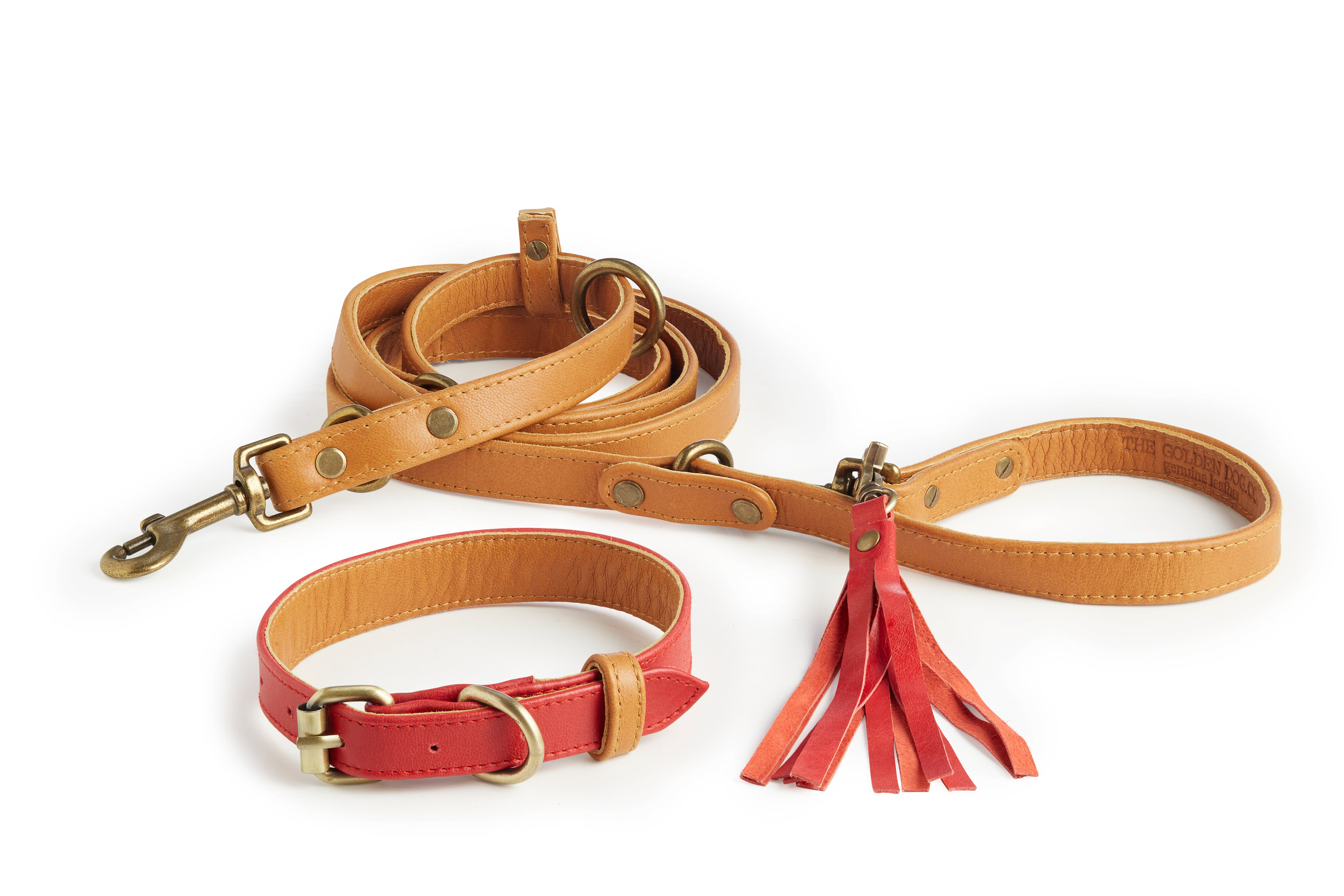 Collar + Leash
