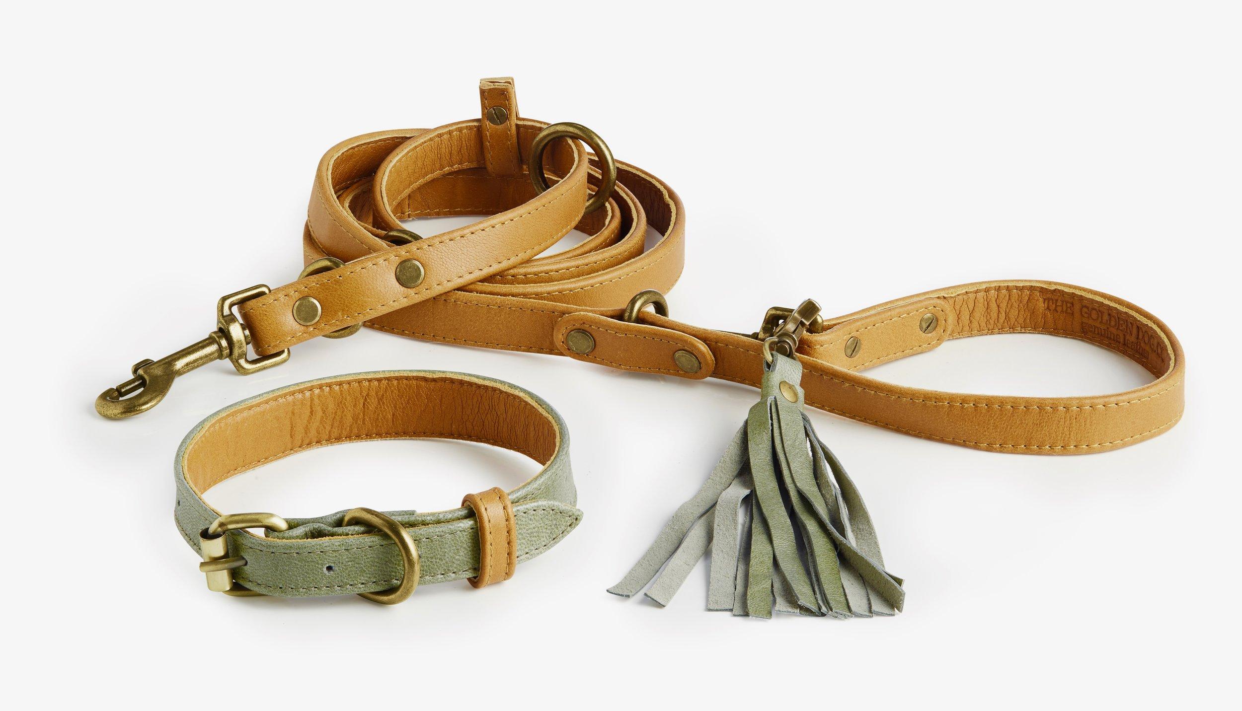 La Jolla Collar + Leash