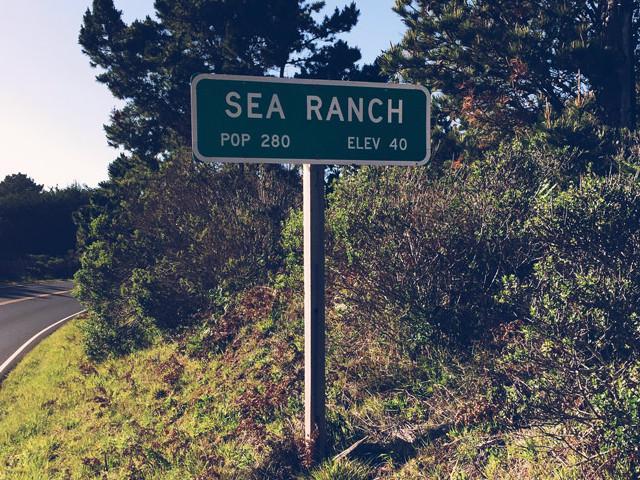 Memorial Run to Sea Ranch