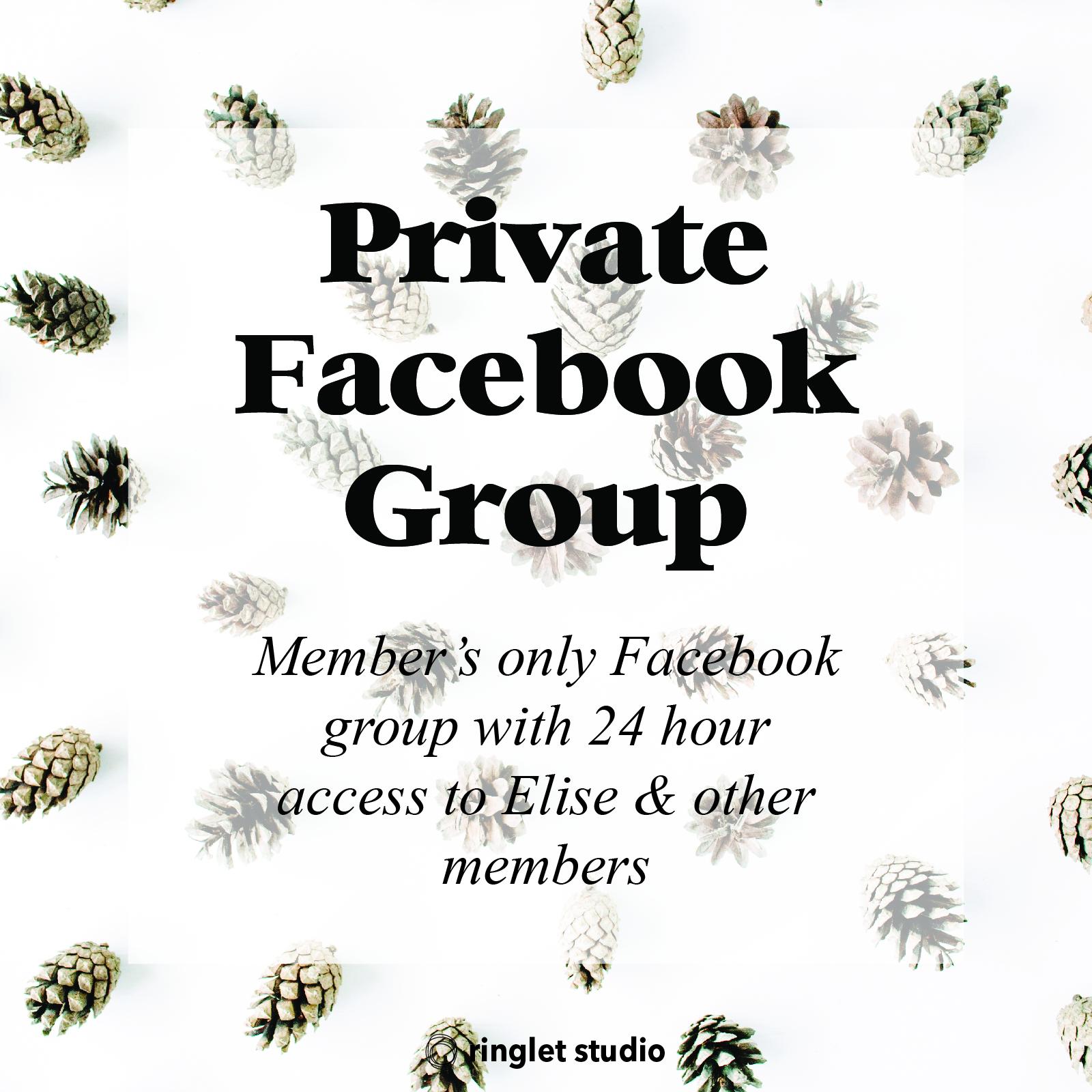 Private Facebook Group.jpg