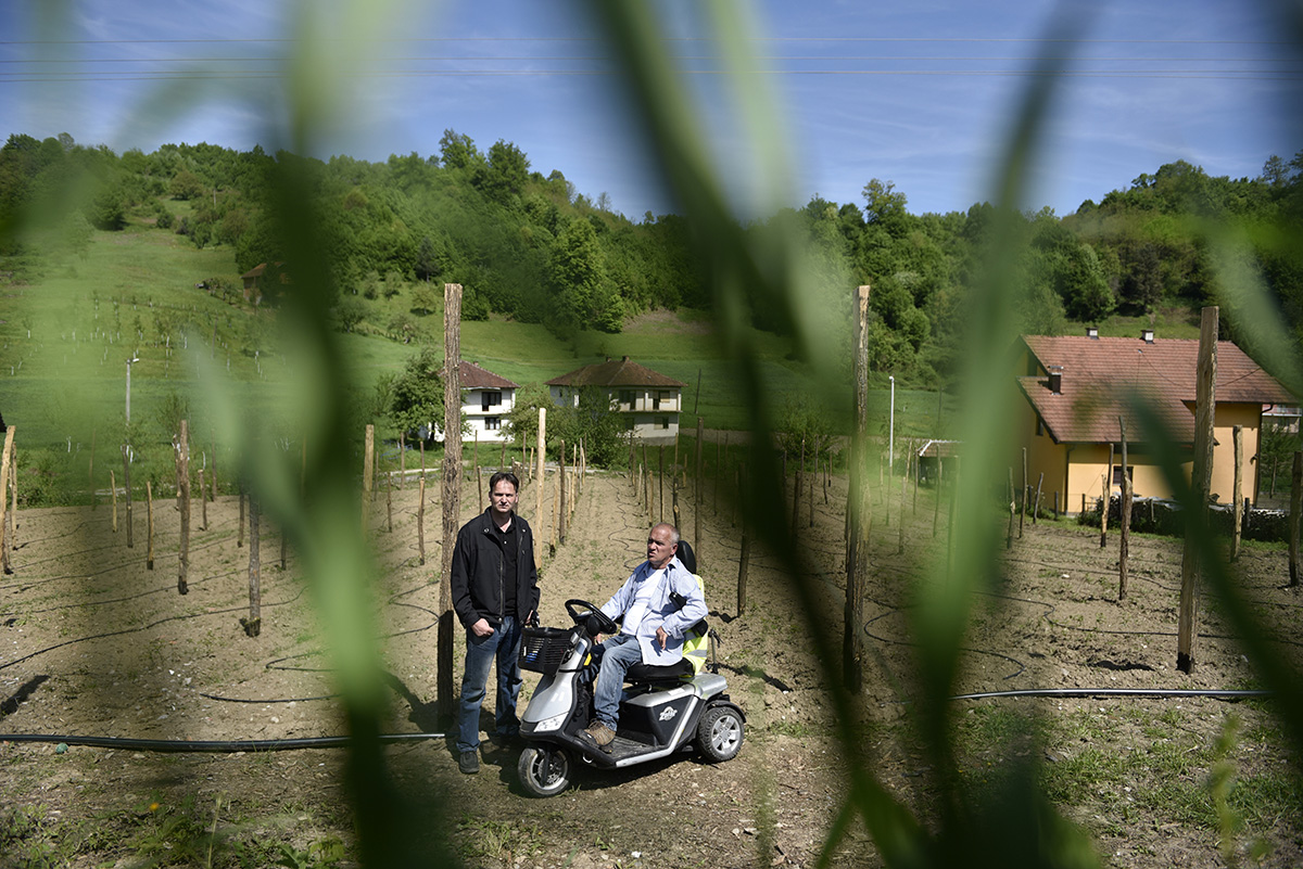 Senad Jusic, a Bosnian Muslim, and Radenko Simic, a Bosnian Serb , in front of their jointly-owned raspberry plantations. Their successful collaboration and close friendship sends a powerful message: business provides a strong incentive to overcome ethnic divides. Srebrenica, Bosnia and Herzegovina.