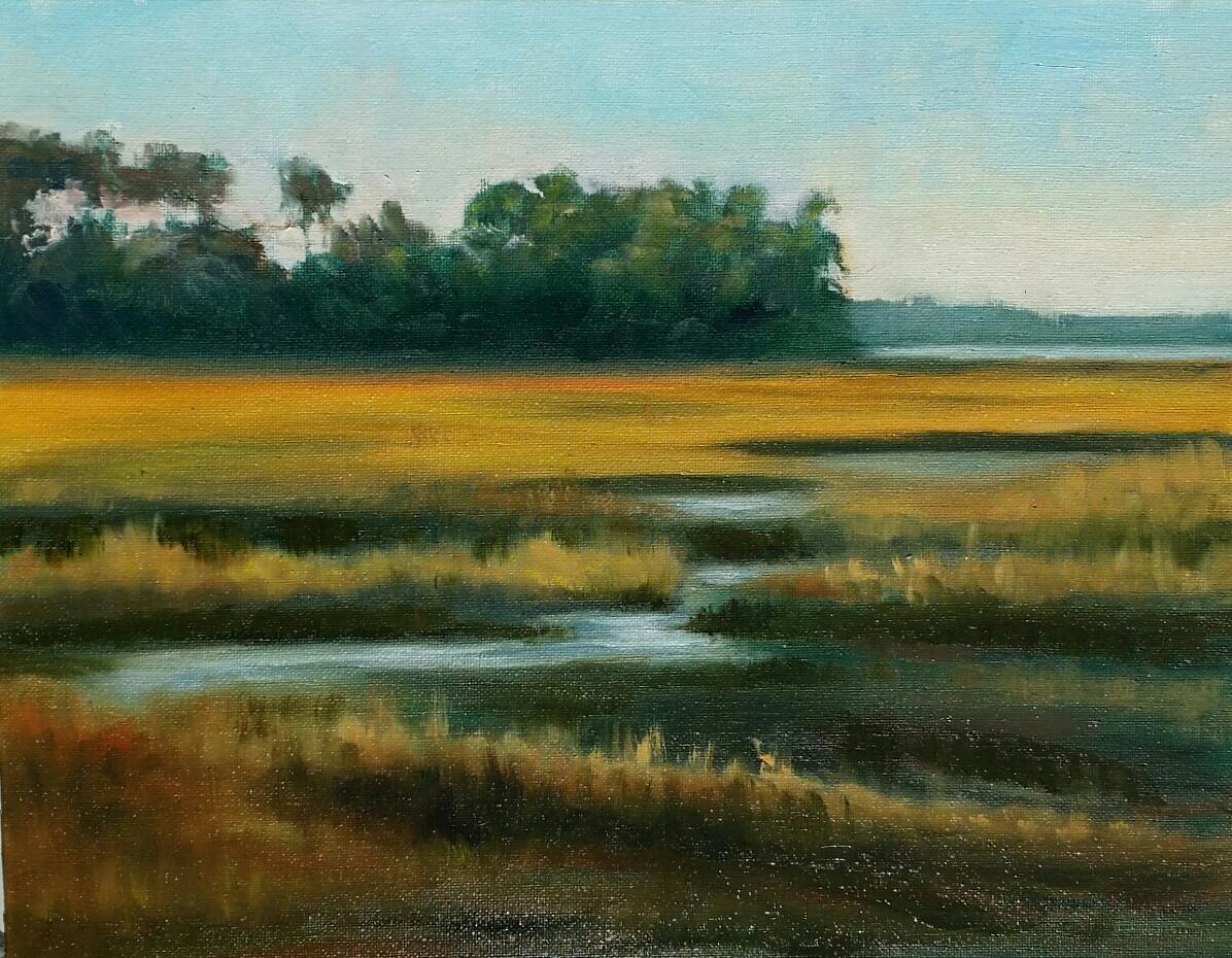 AS SHADOWS FALL  (Marsh at Lady Slipper)
