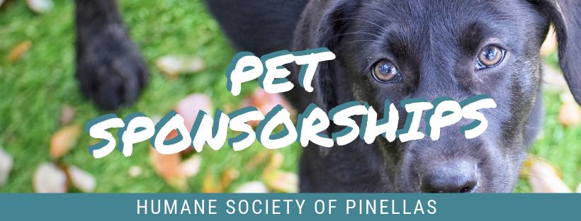 PetSponsorship.png