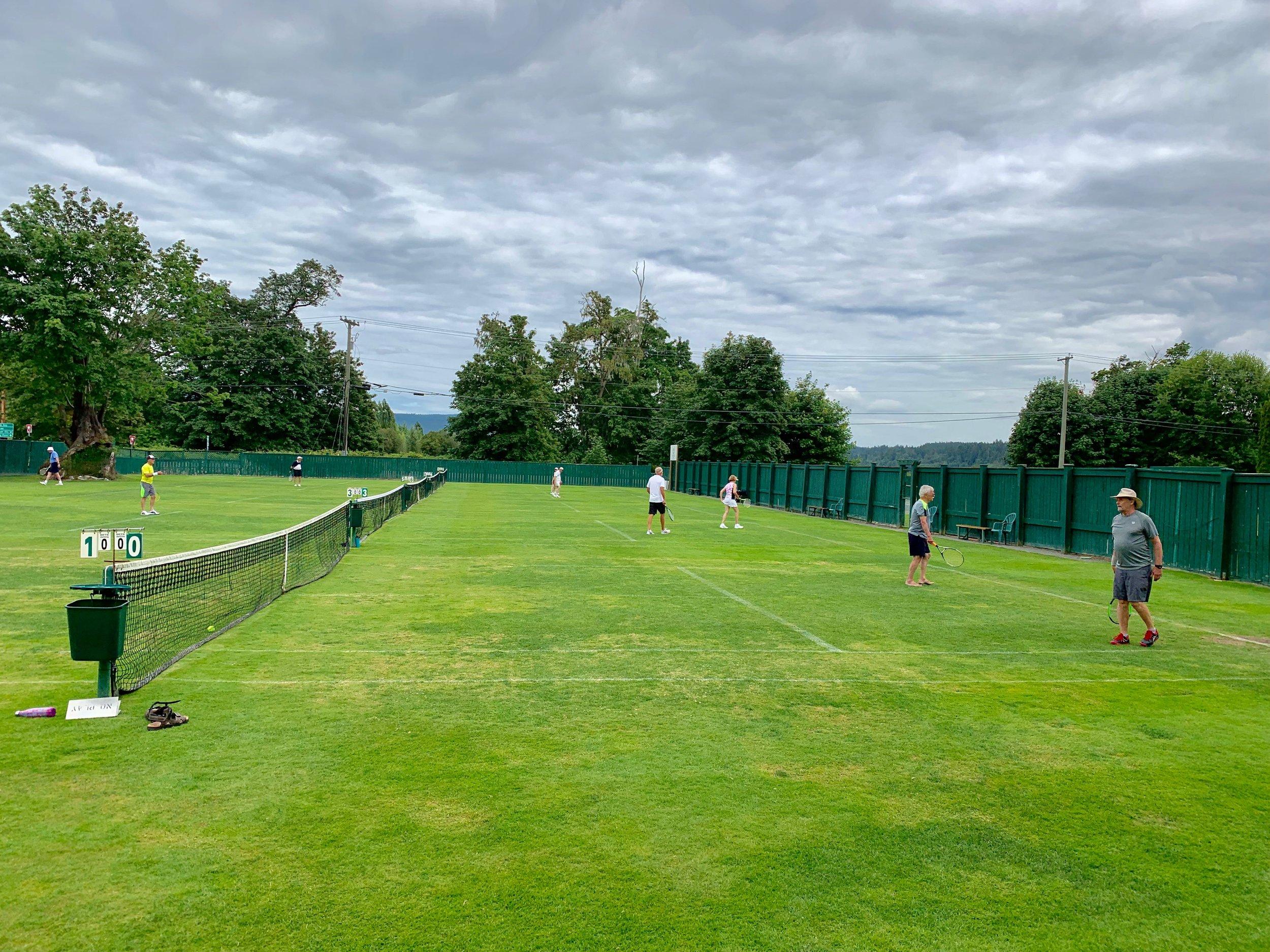 grass courts.JPG