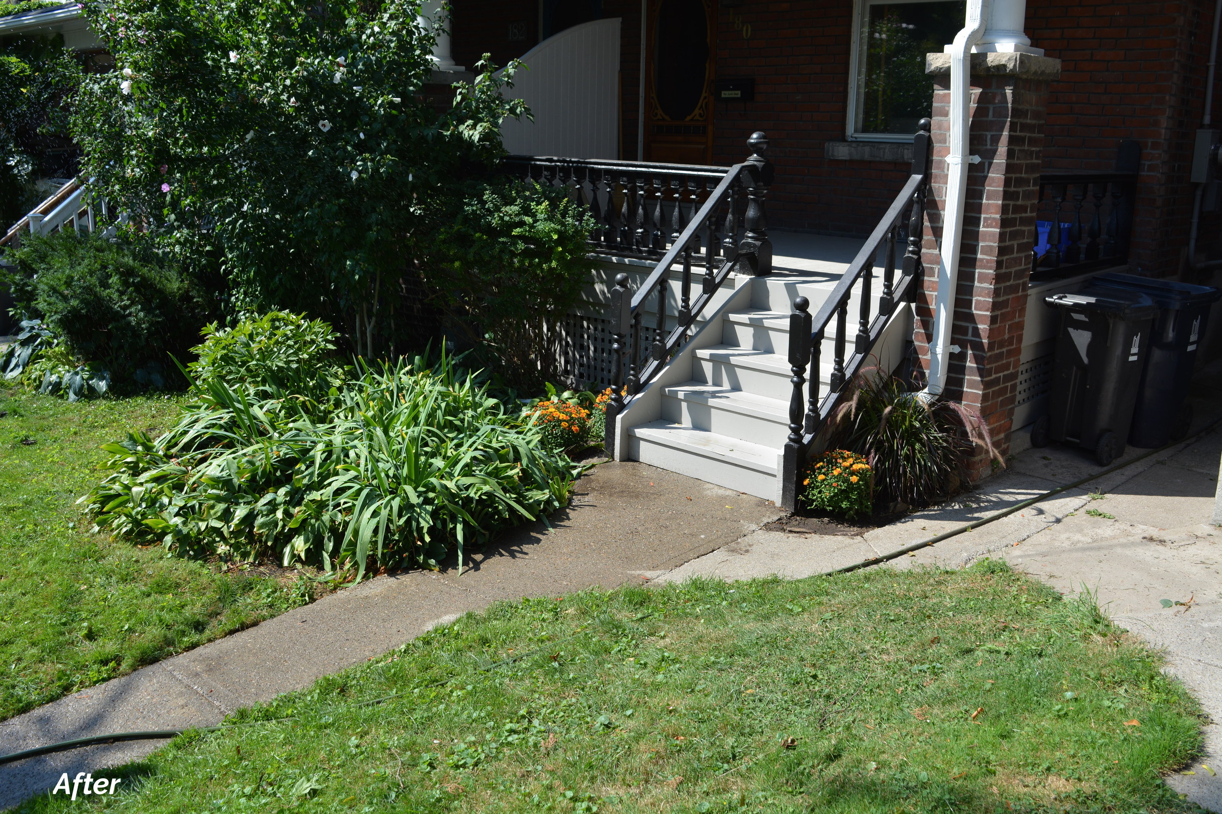 Real Estate side stairs.JPG