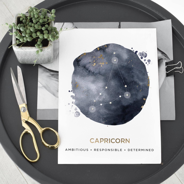 Capricorn-B-2.jpg