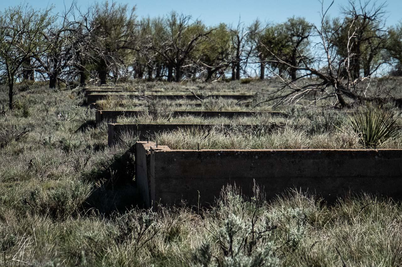 Amache Incarceration Camp