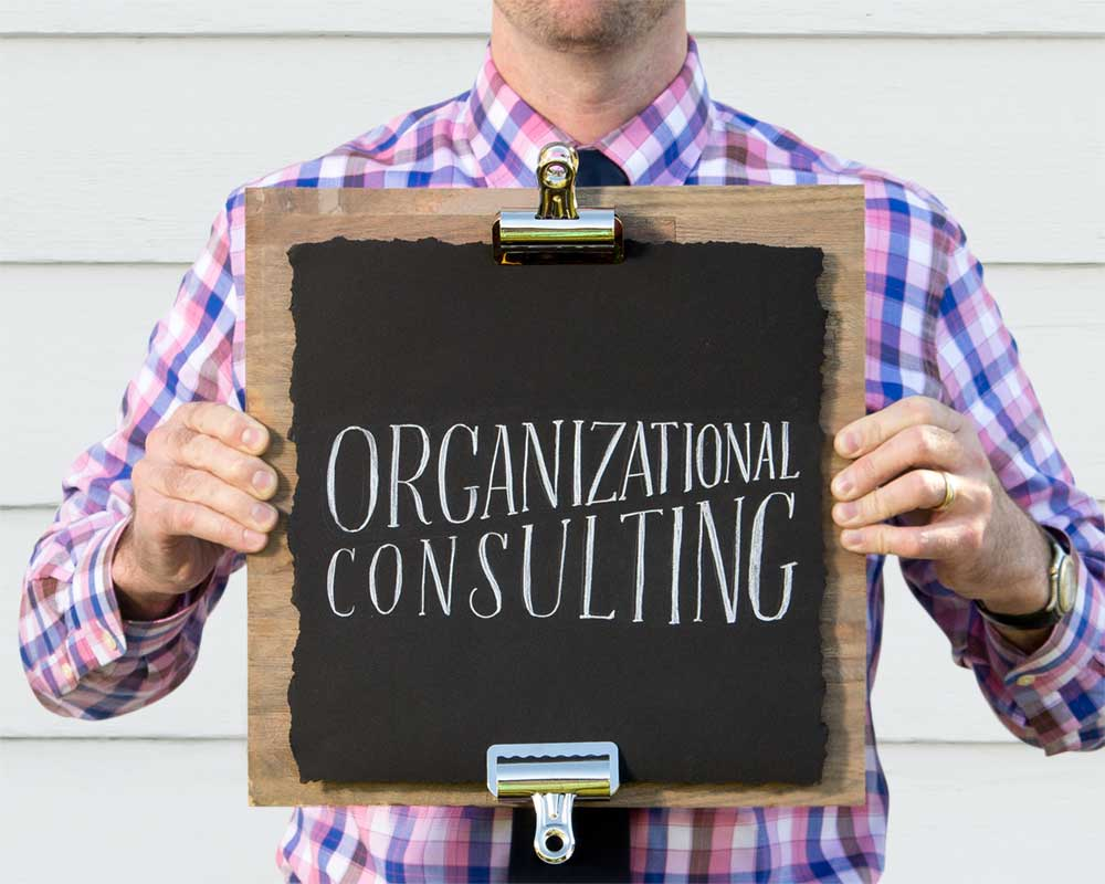 Organizational Consulting   Change + Growth    Learn More