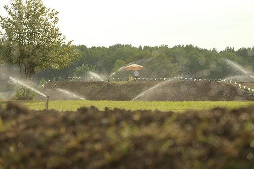 Raceway Park track .jpg