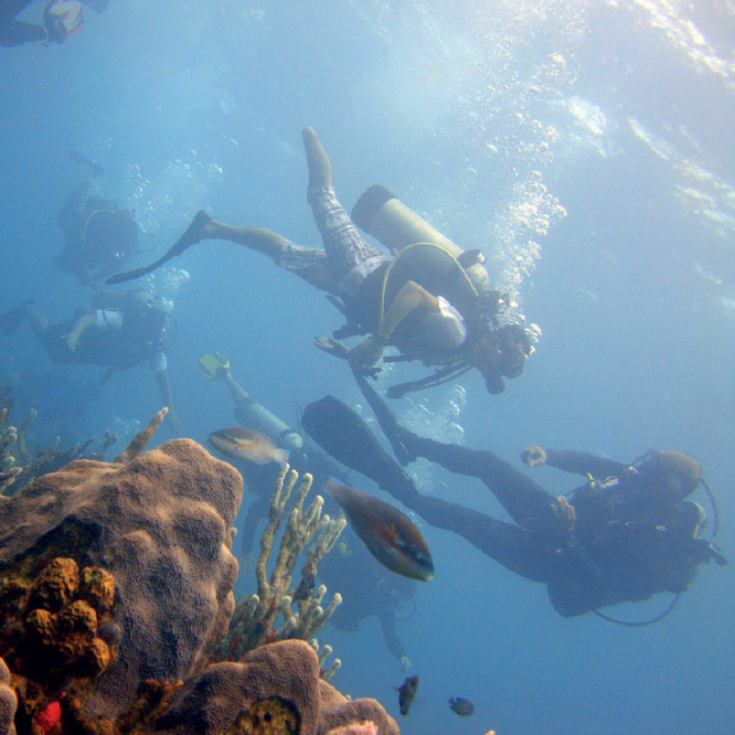 divingplanet.jpg