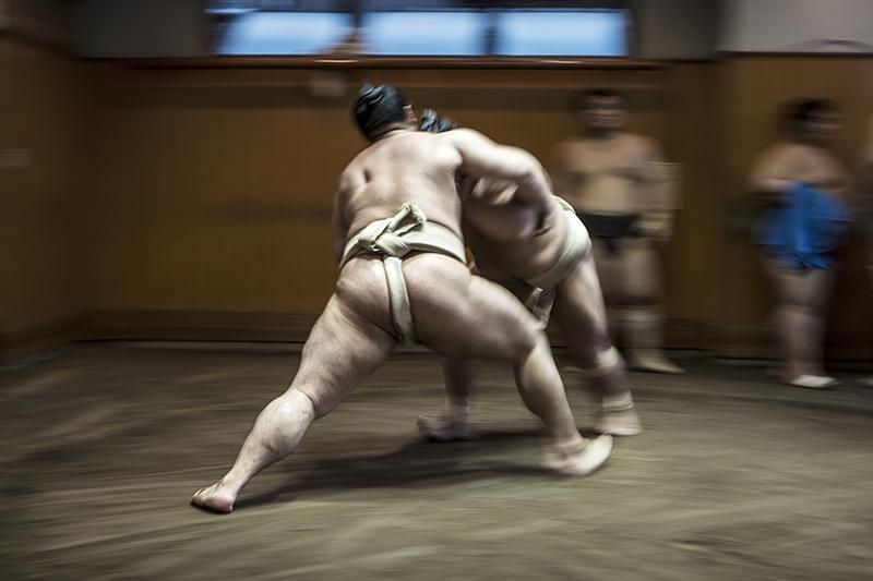 Sumo Shuffle