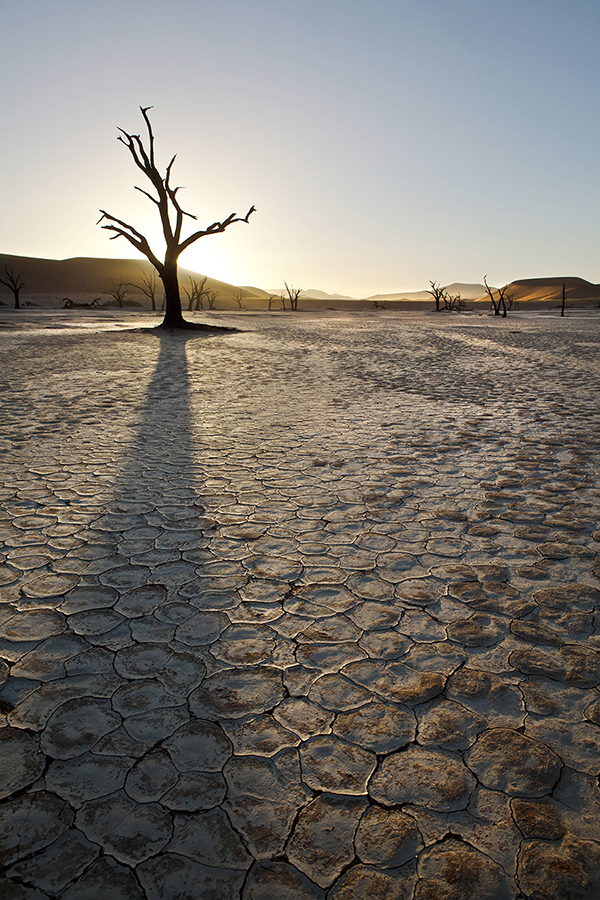 Deadvlei Leading Line