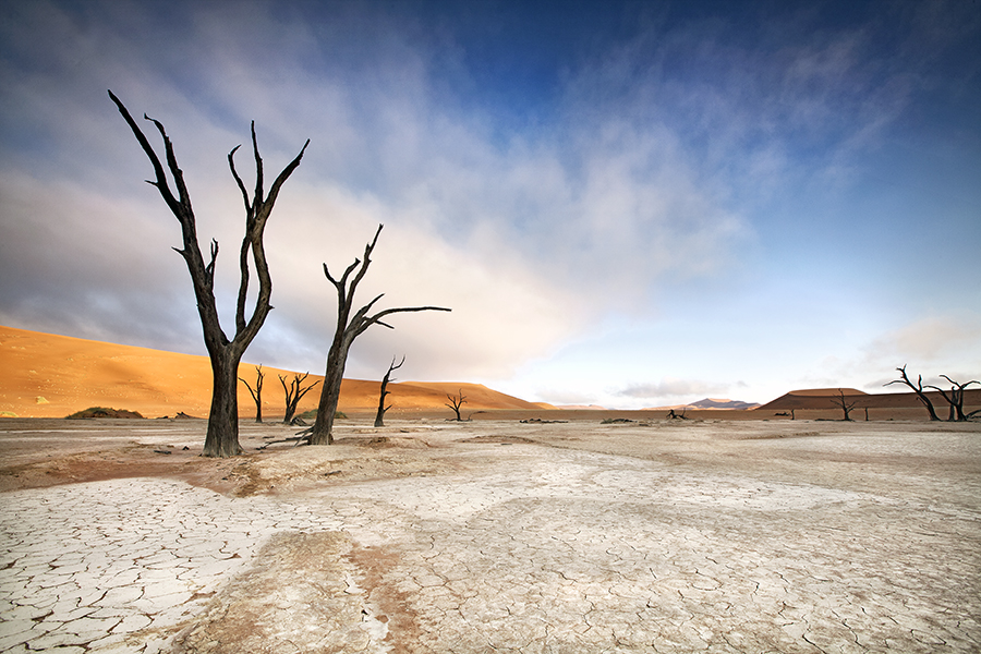 Deadvlei Dawn