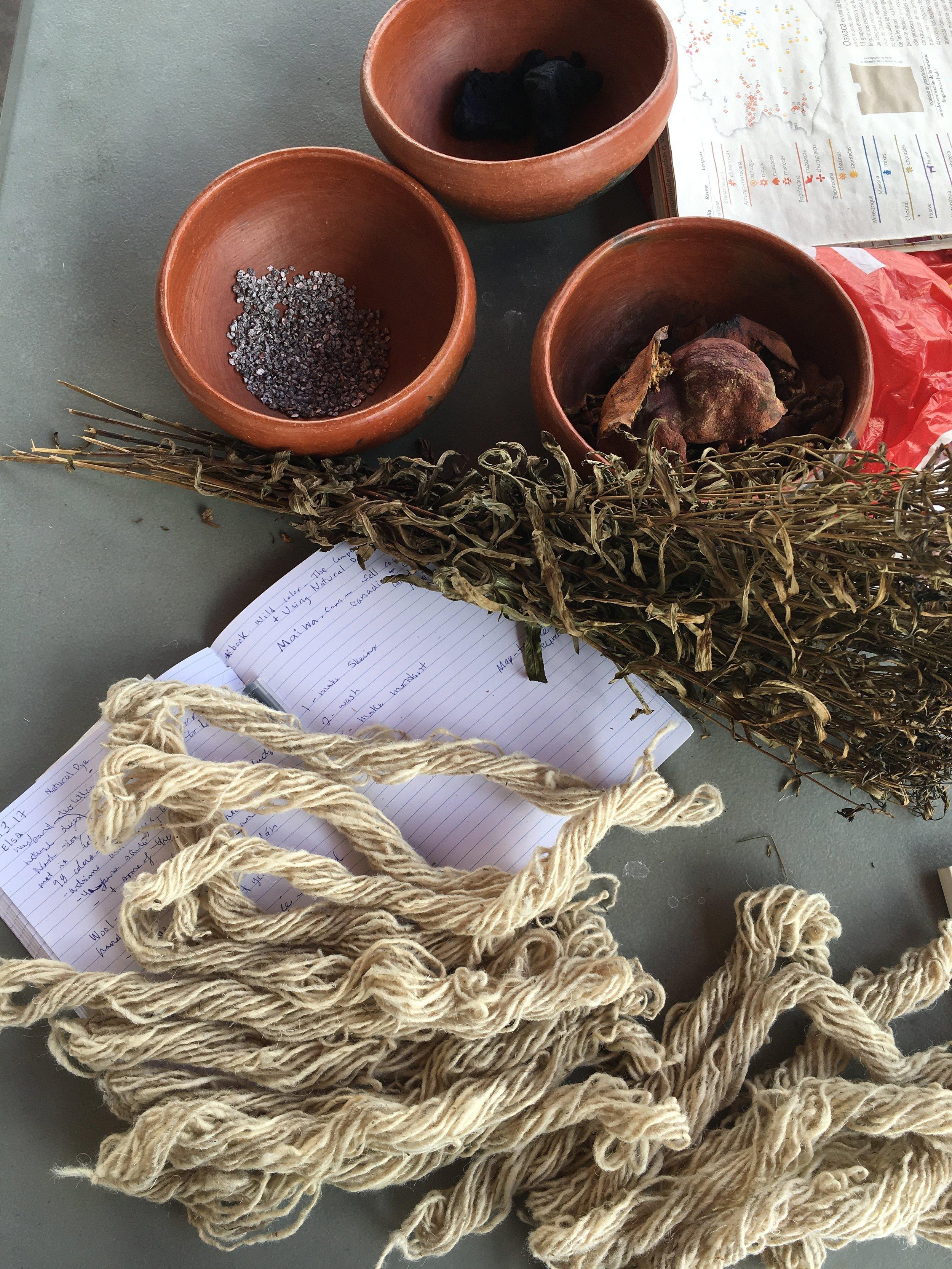 natural-dye-ingredients-oaxaca.JPG