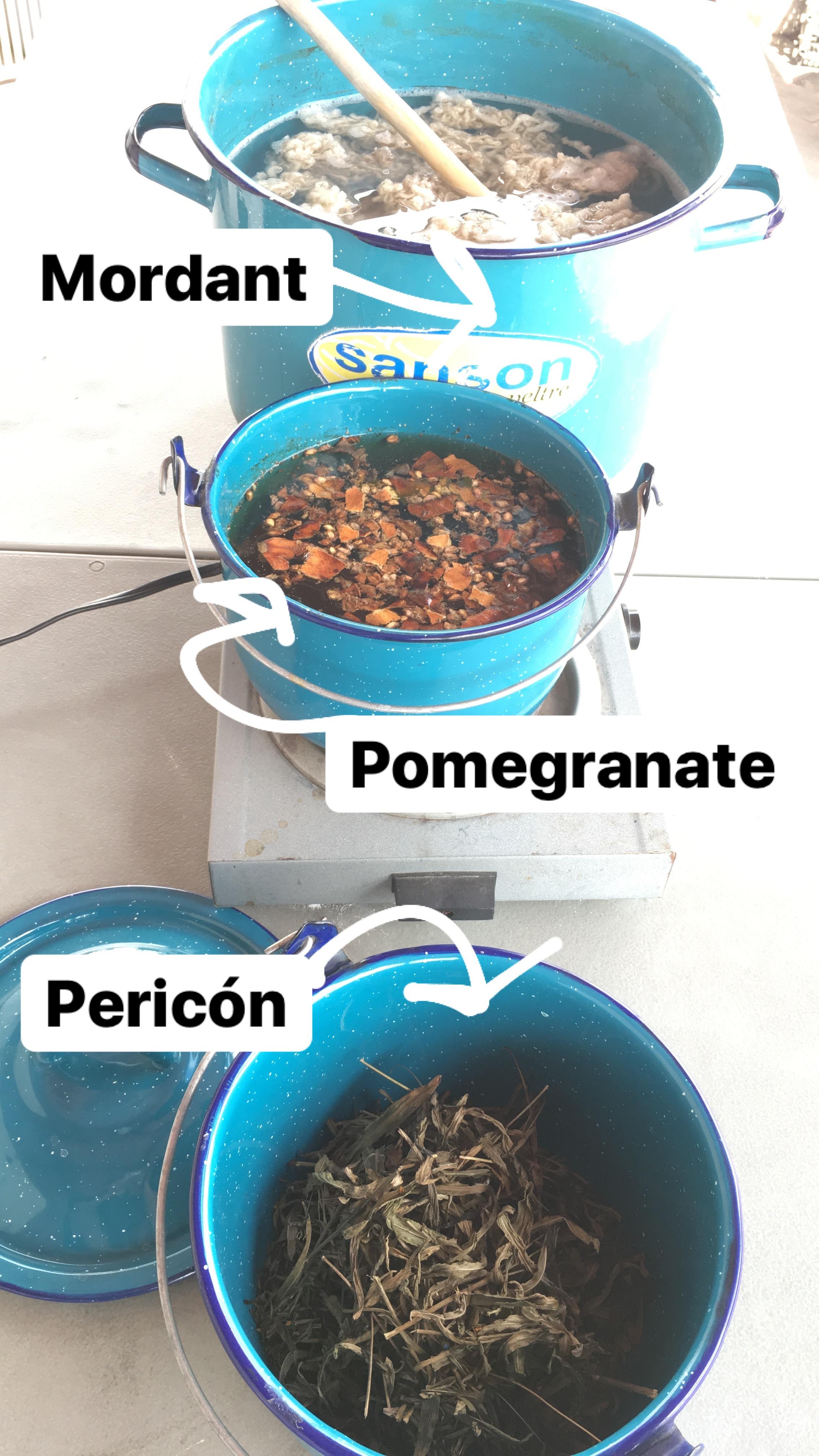 natural-dye-workshop-ingredients-oaxaca.JPG