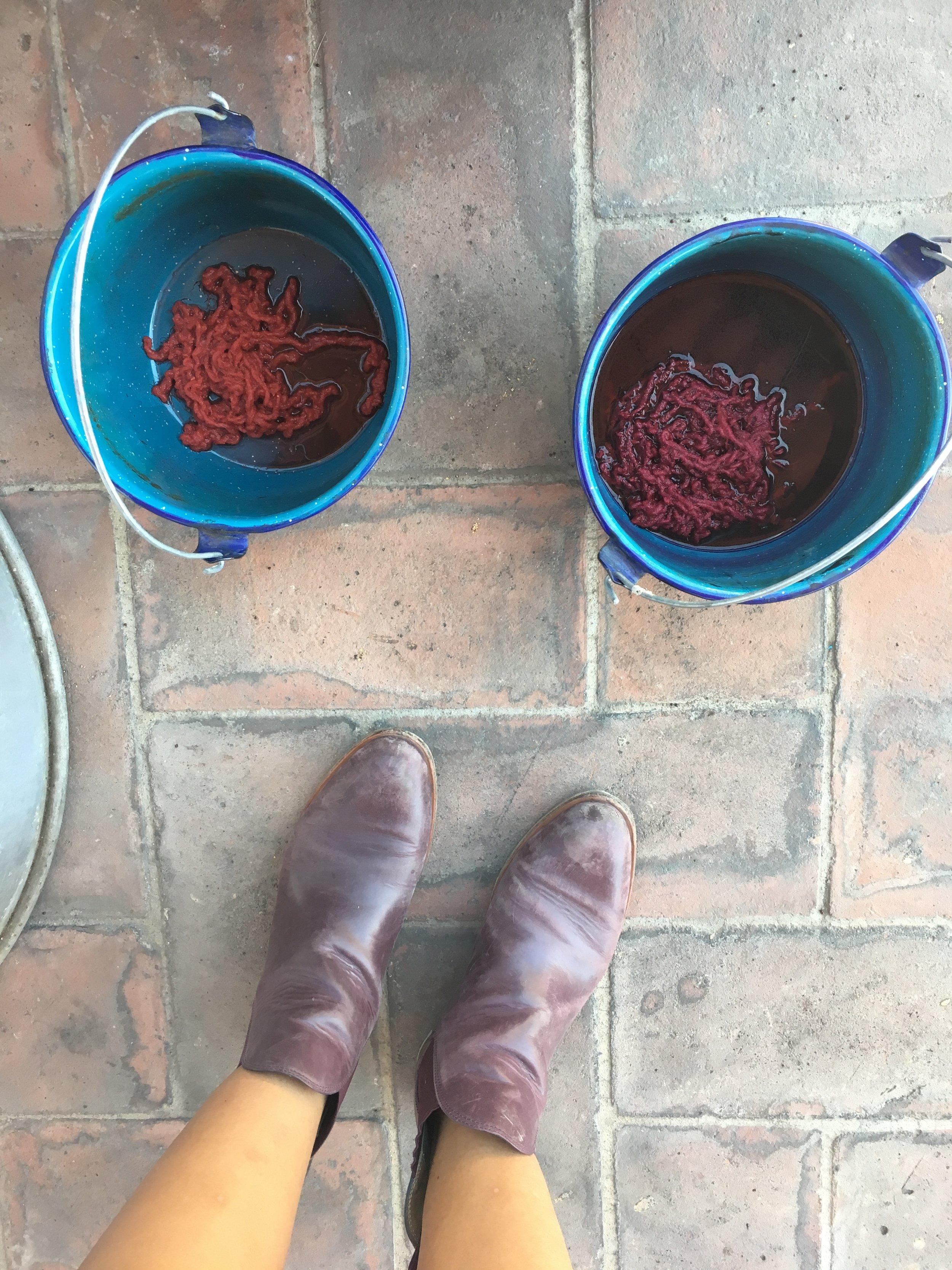 cochineal-dyeing-oaxaca.JPG