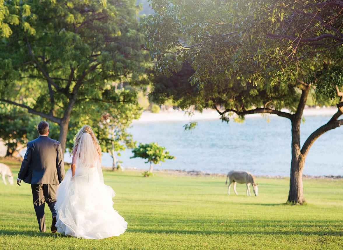 St.-John-US-Virgin-Islands-Wedding-Photographer36.jpg