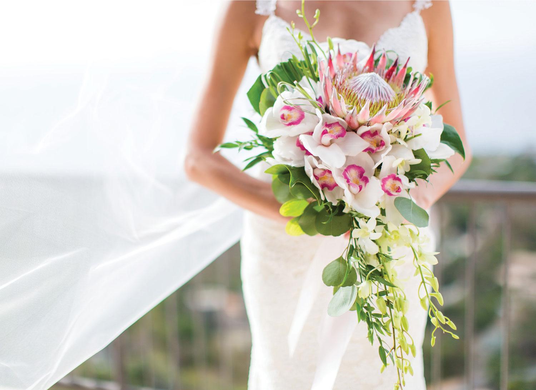St-Joh-Virgin-Islands-Wedding-Photographer40.jpg