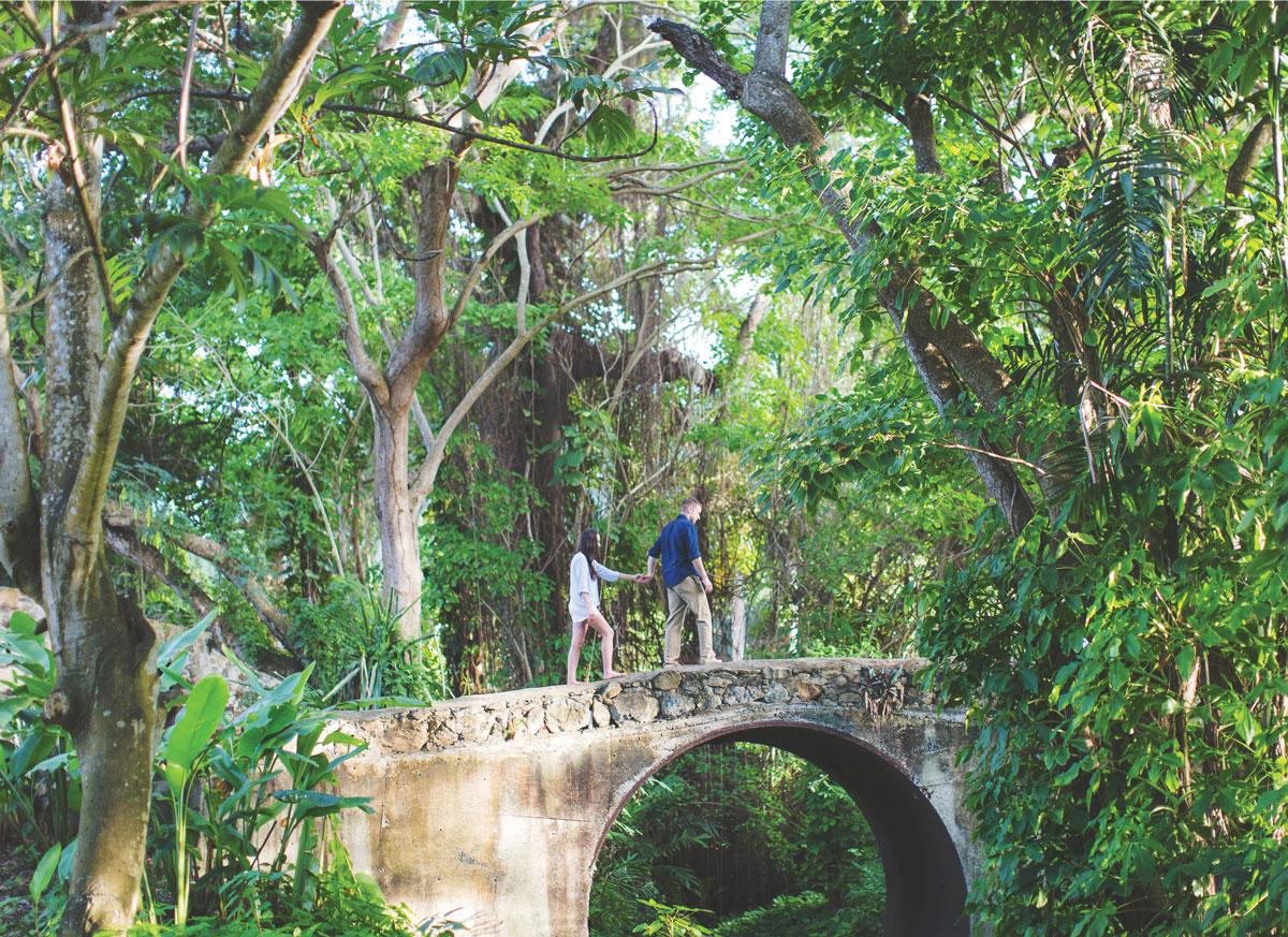 St-Croix-Virgin-Islands-Engagement-Photographer13.jpg