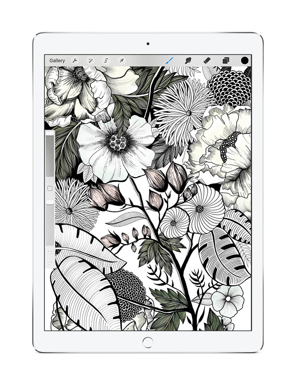 surface design of botanical and floral illustrations created on iPad and procreate, preferred digital illustration tools.