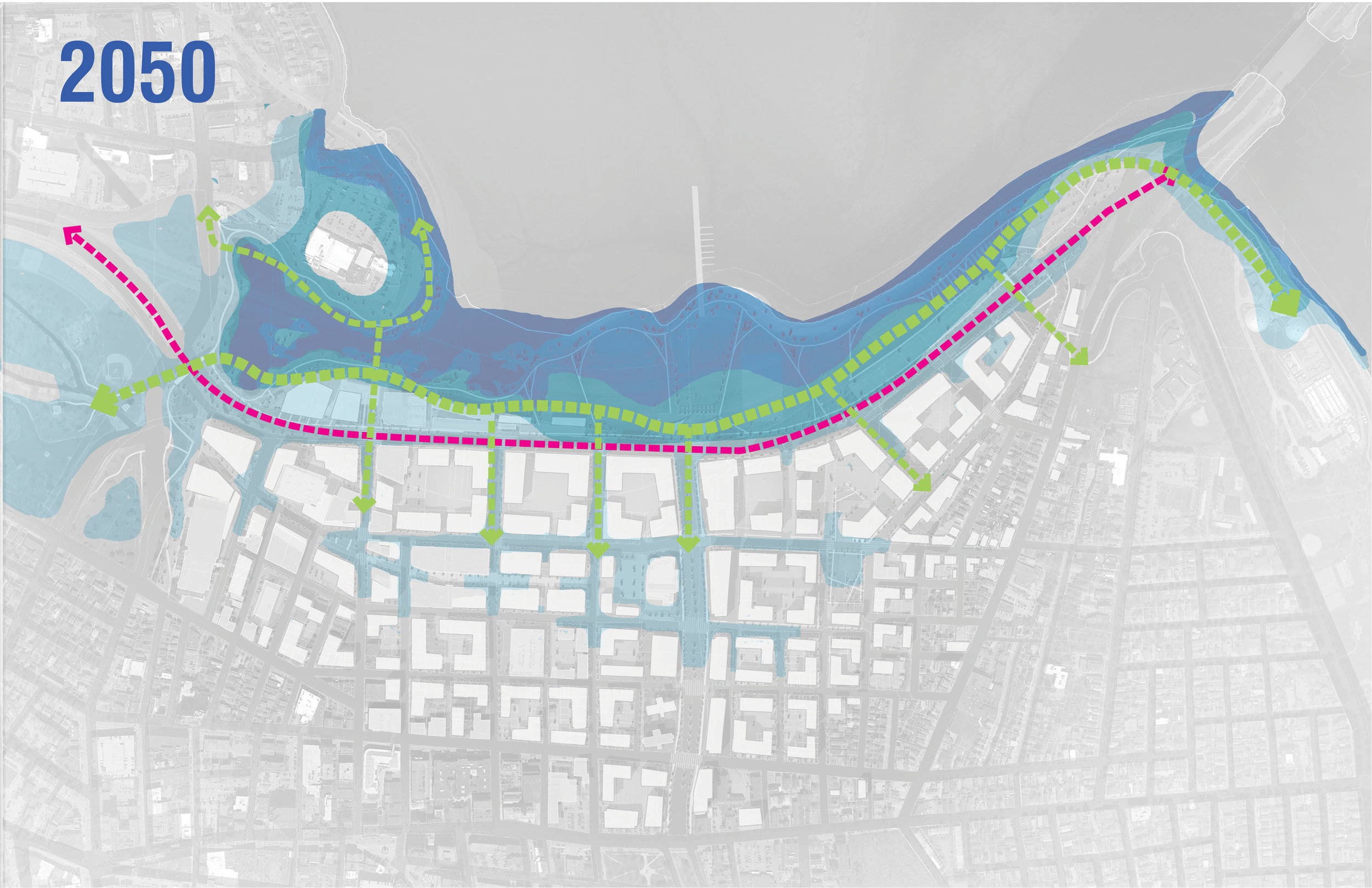 ALA - Bayside Adapts 2050.jpg