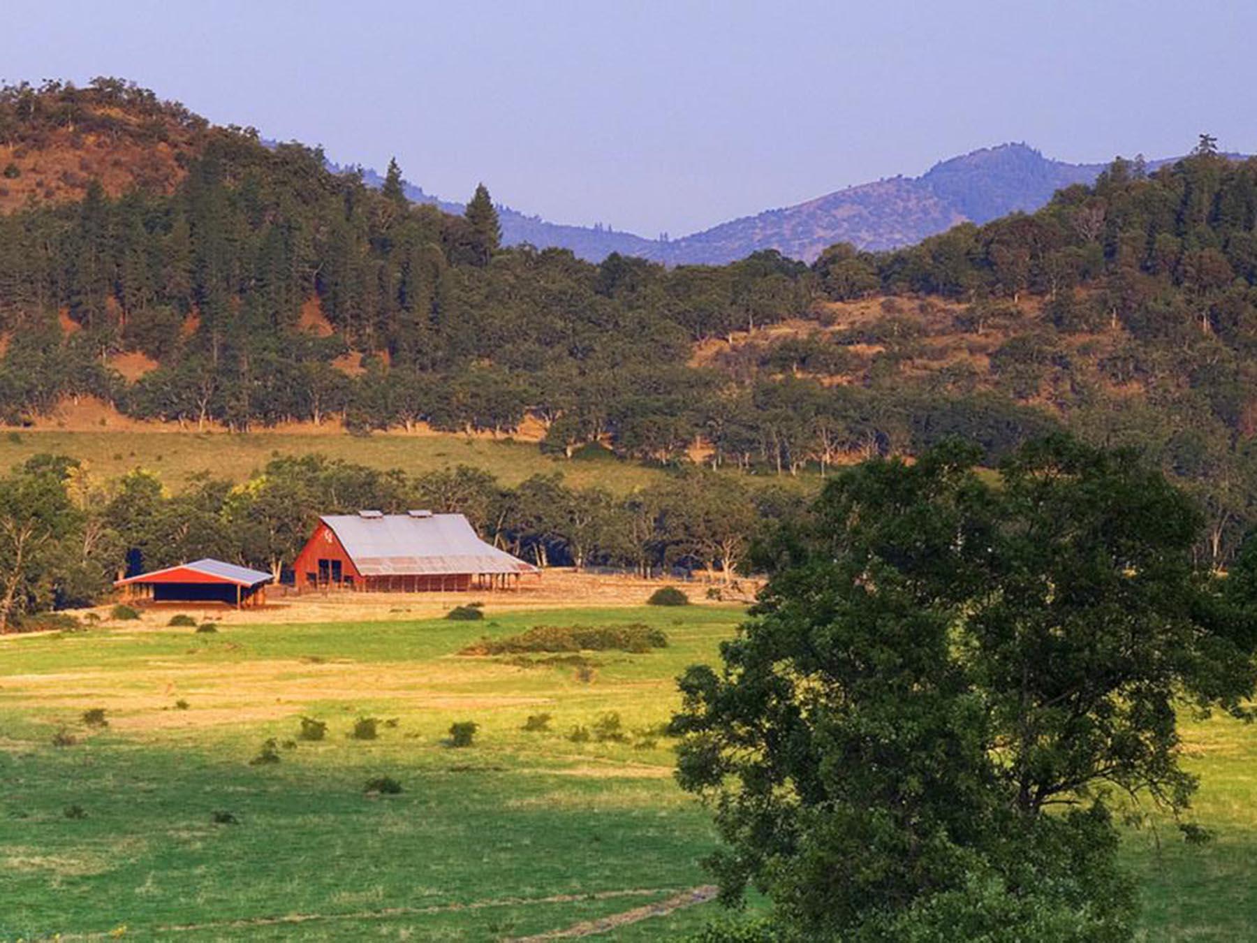 C2 Ranch. Thomas Kirchen photo.