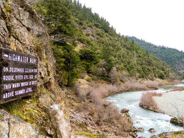 High water mark along the middle Rogue River during the 1964 flood.
