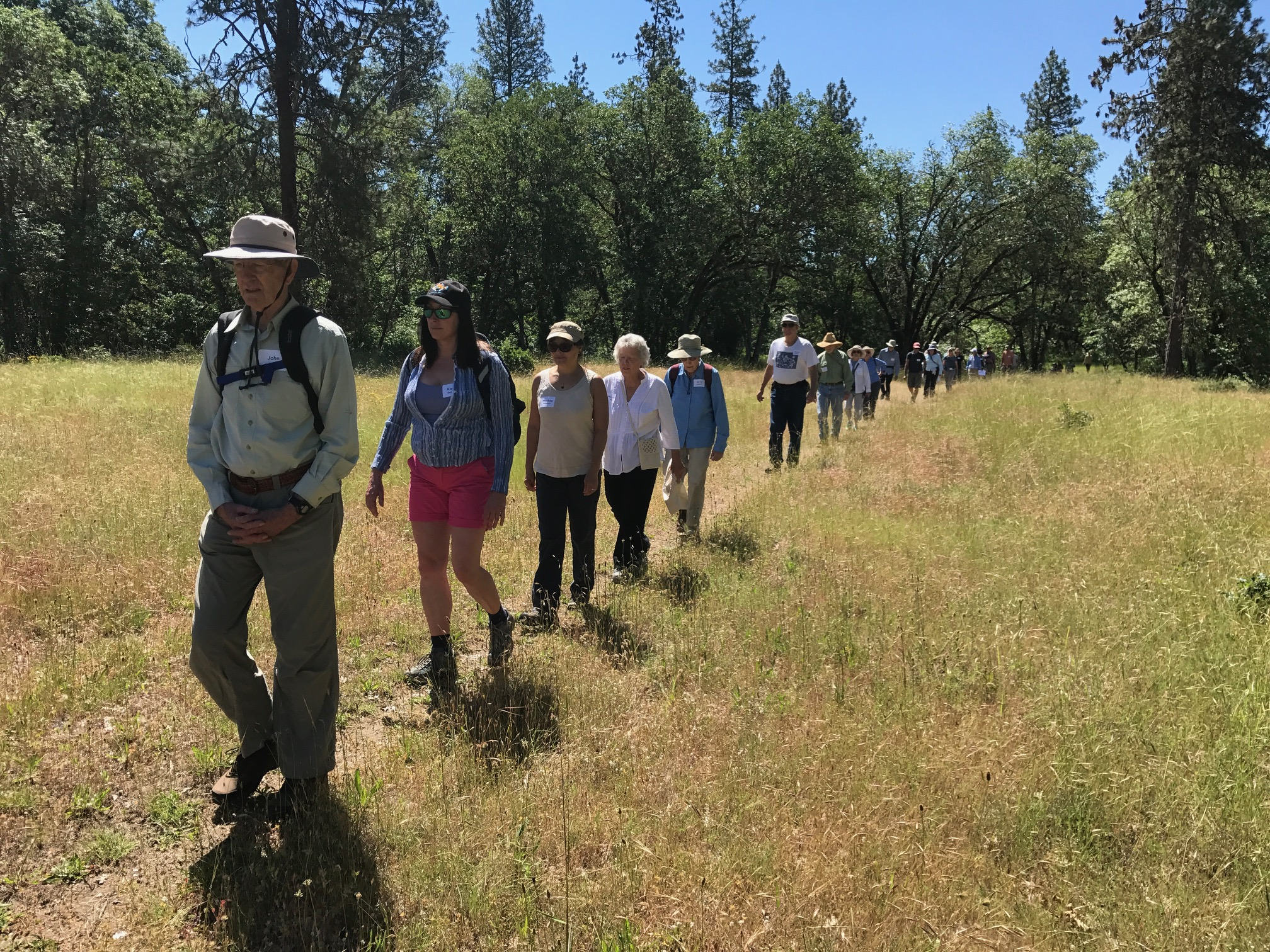 2017AnnPicnic_KH_iPhone (1)LineOfHikers.JPG