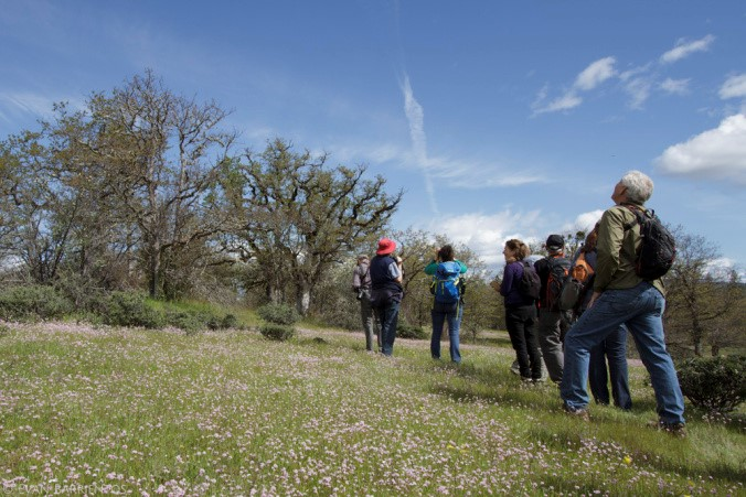 Hikers admiring SOLC's Rogue River Preserve on a public hike last spring.