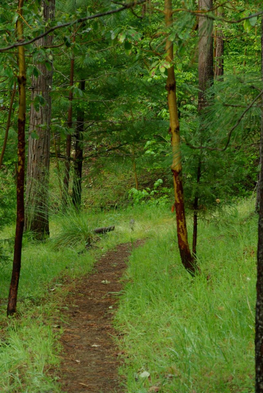 Trails abound