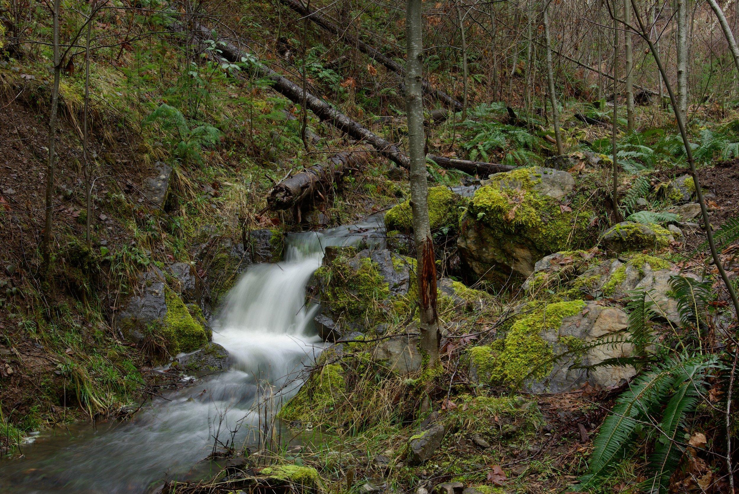 Tributary waterfall