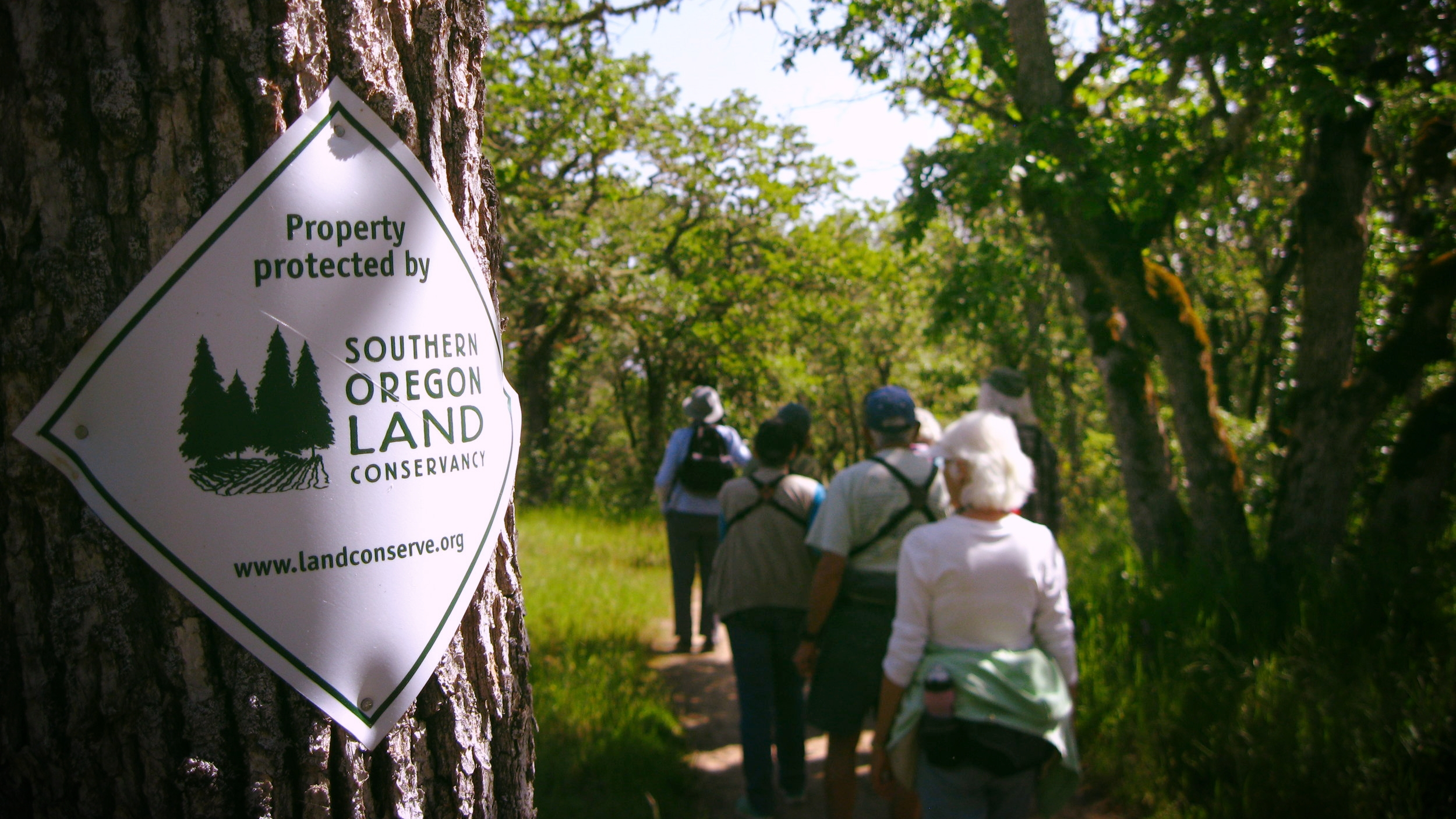 Hikers enjoying a guided bird walk in the conserved Jacksonville Woodlands.