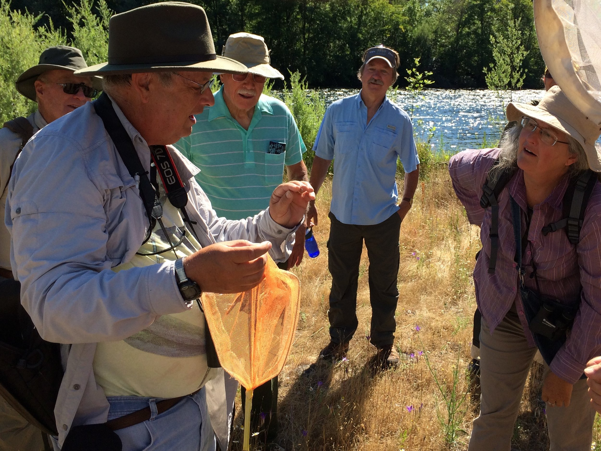 Dragonfly Exploration at Rogue River Preserve