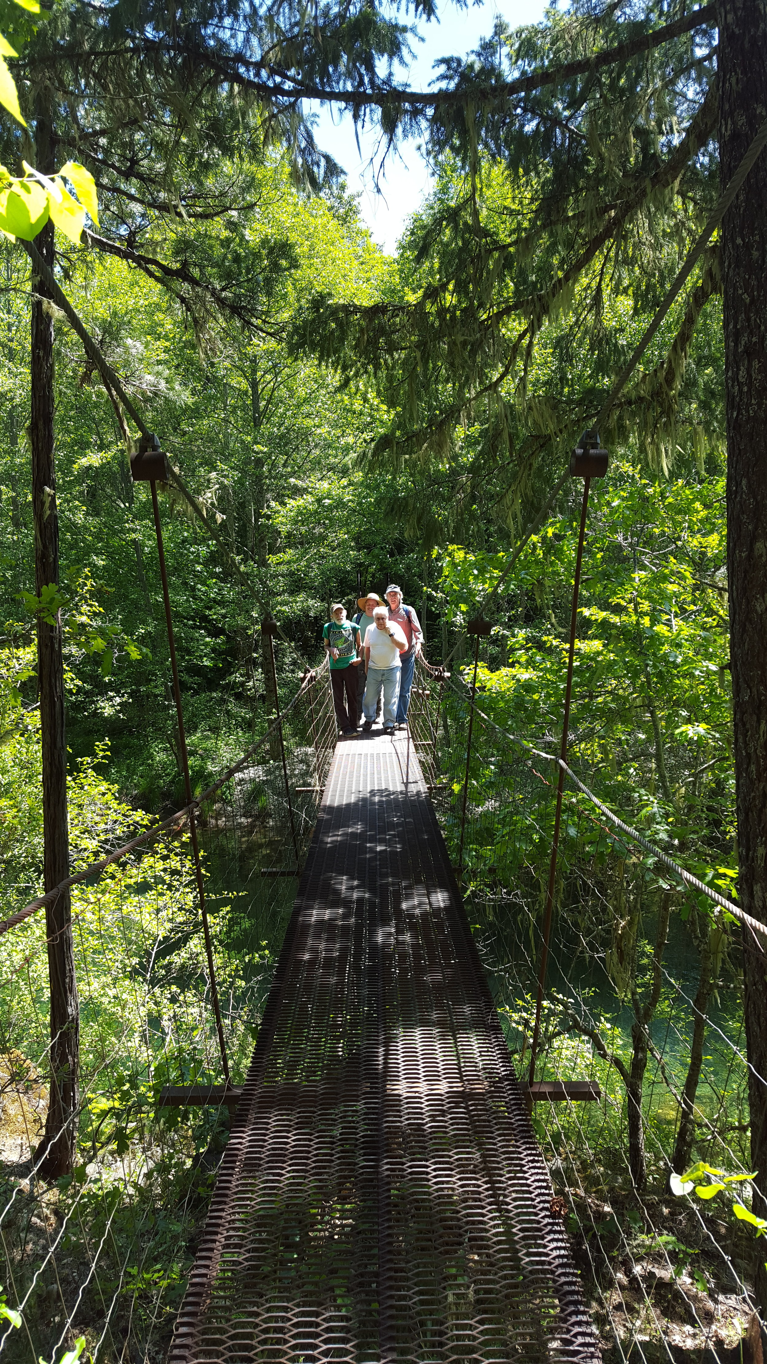 Meadows community suspension bridge with staff and volunteer lands committee members during an annual monitoring visit.