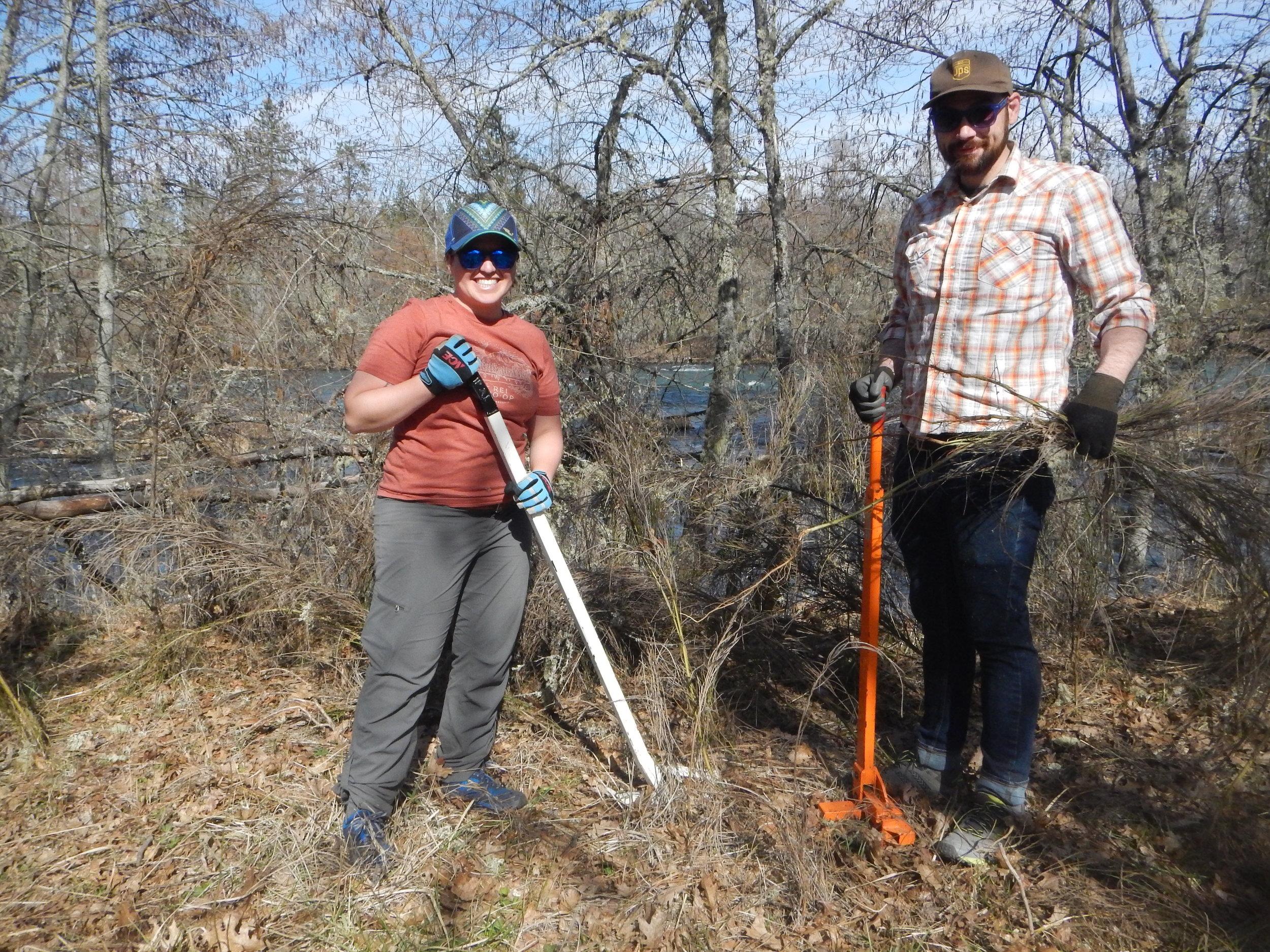Volunteers doing the good work removing invasive Scotch broom.