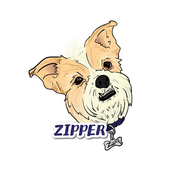 Zipper_forSite.jpg