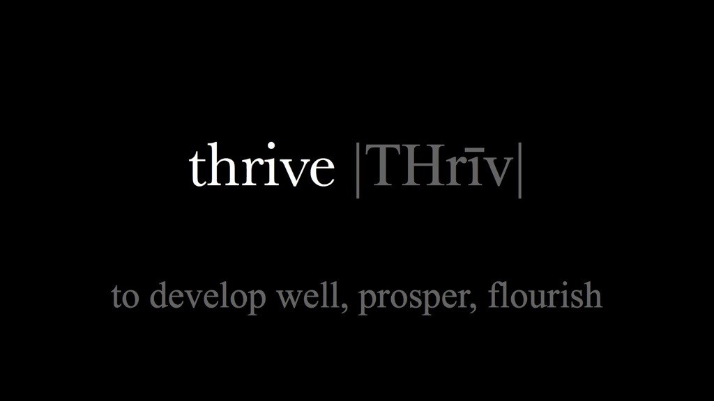 Starting January 8, join us as we explore ways to Thrive in 2017!