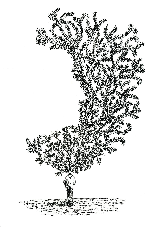 Treeface_web.jpg