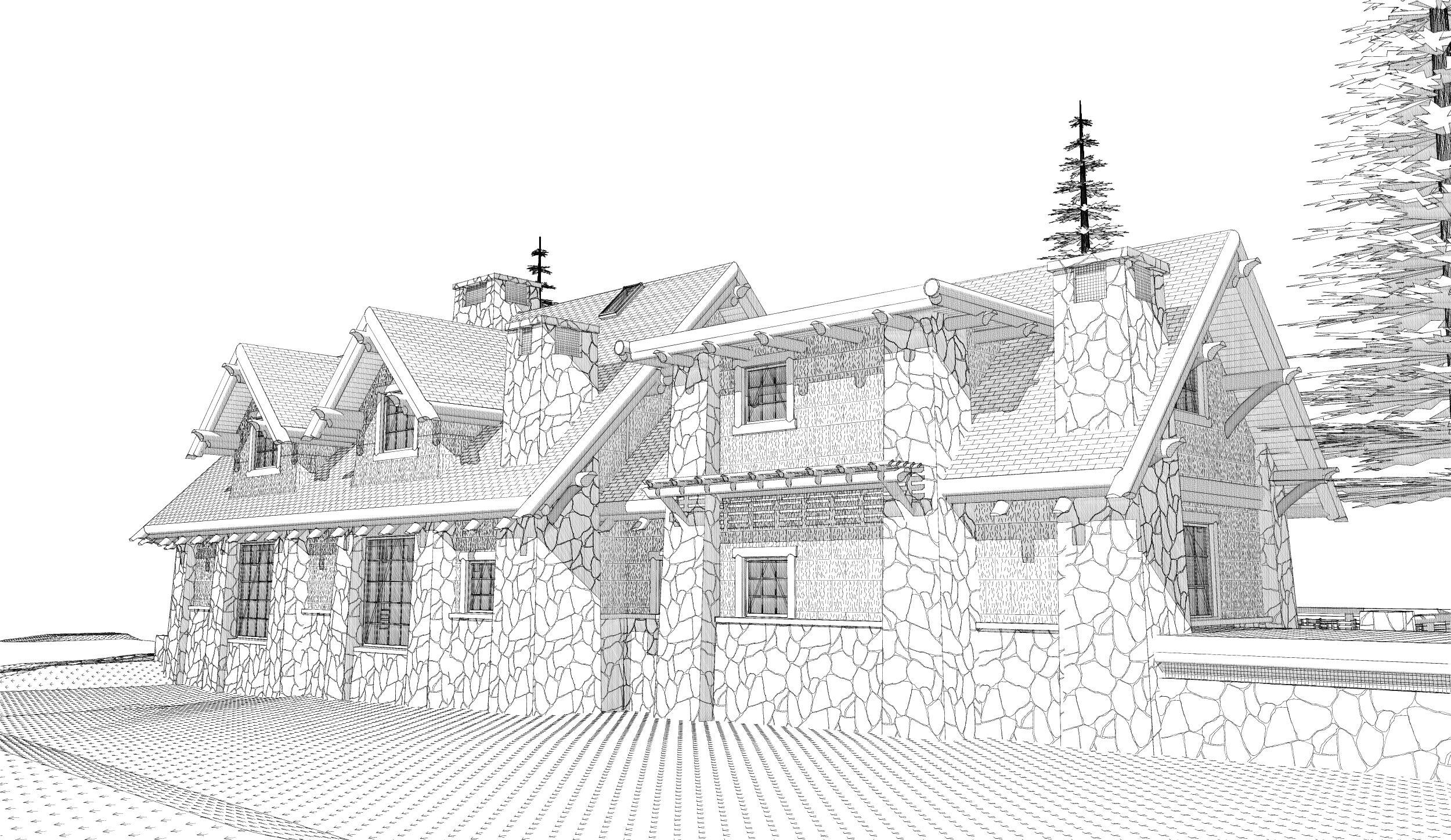ARCHITECT RUSTIC DESIGN HOUSE NC 03.jpg