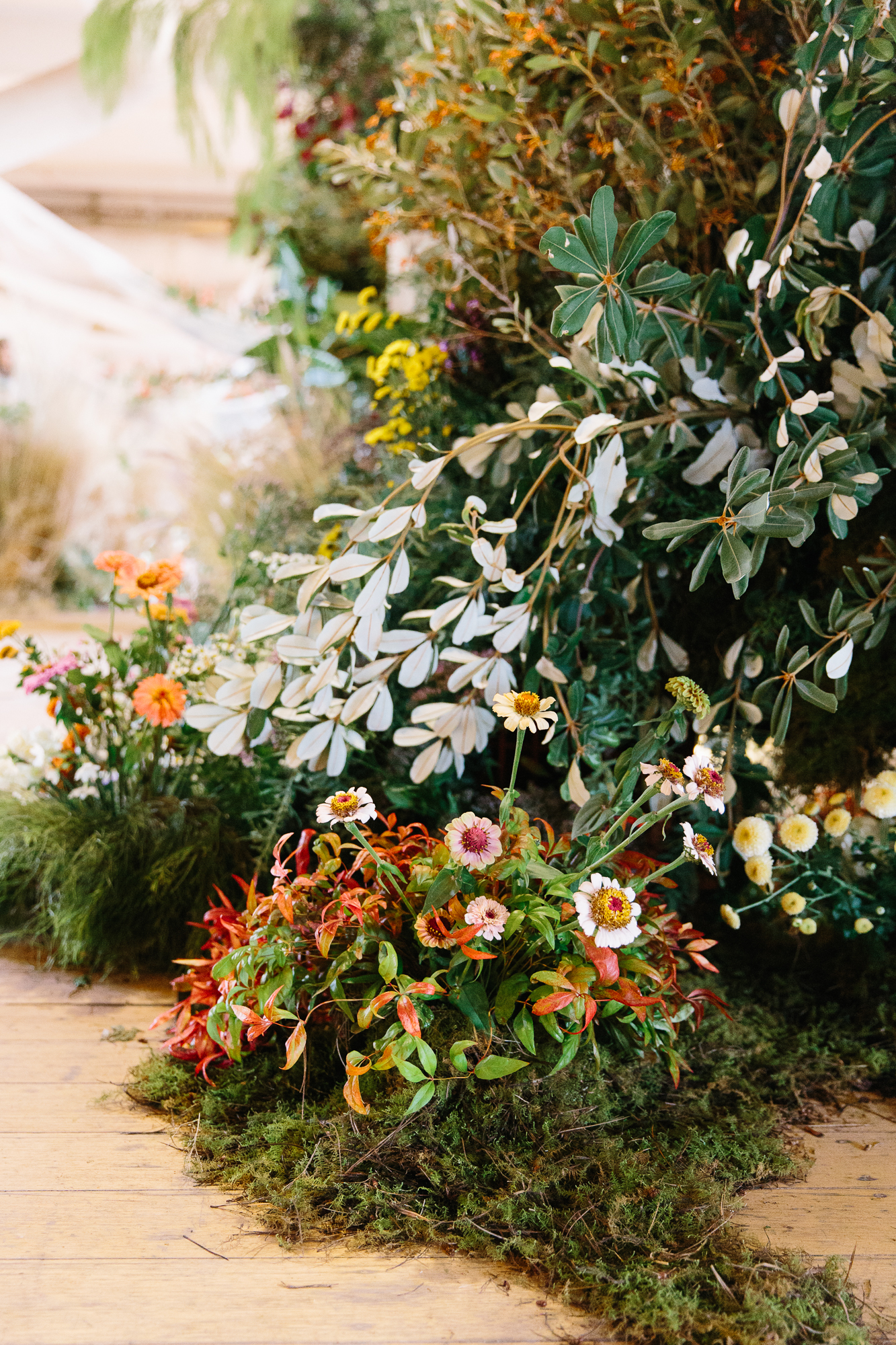 Flos-Flowering-Now-Samee-Lapham_043.jpg