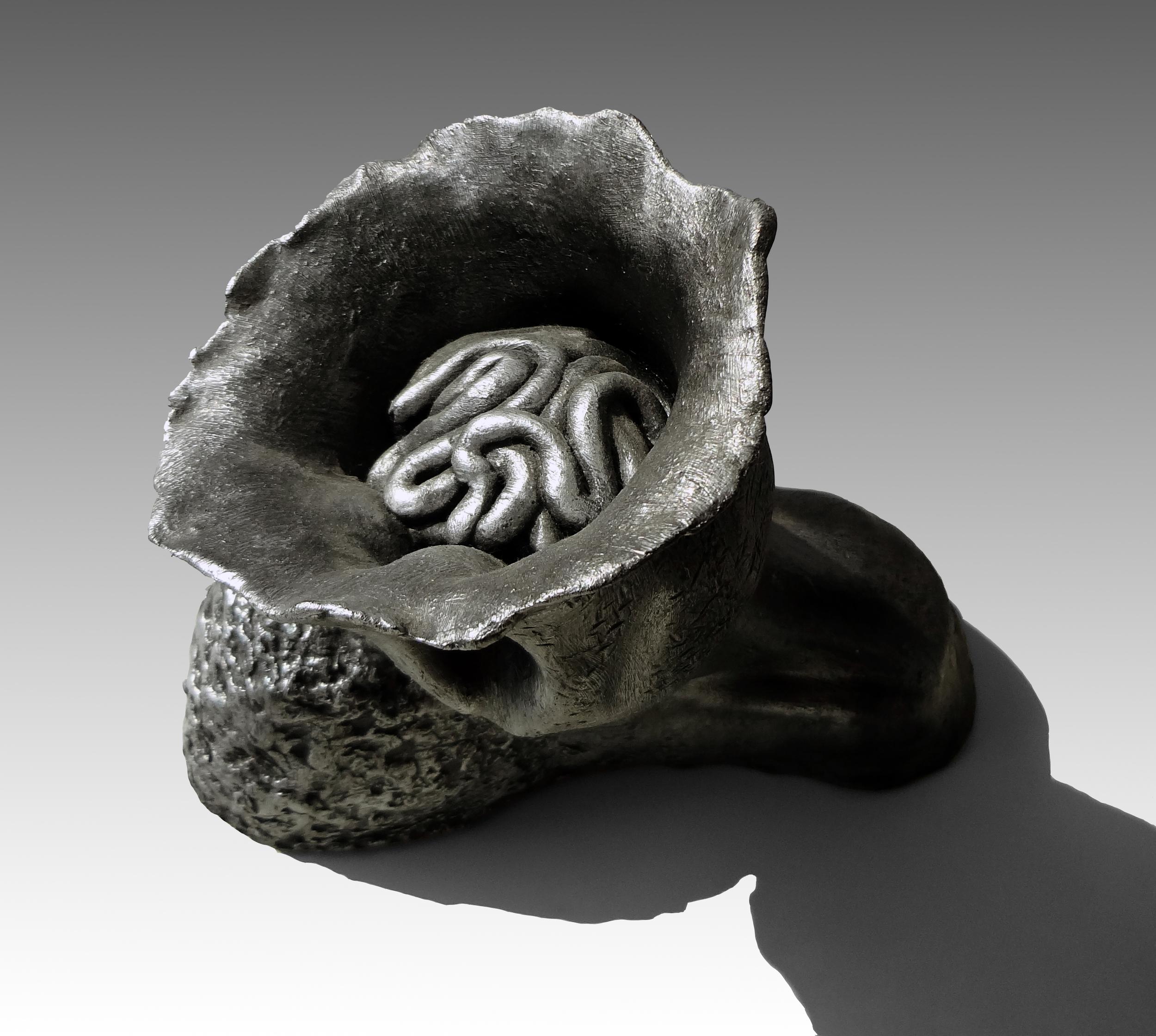 2010 Brain Top-Recovered.jpg