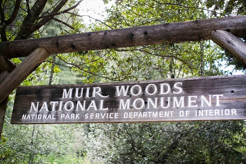 MuirwoodsEngagementPhotography_0062.jpg