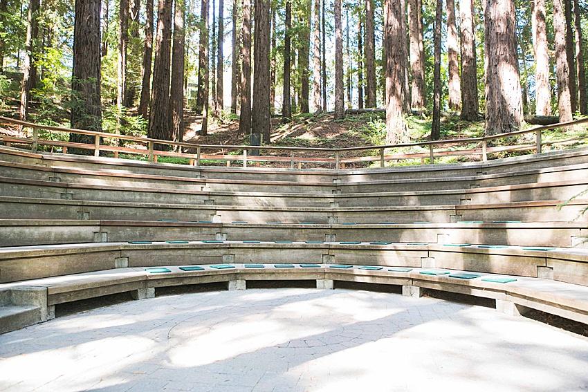 BerkeleyWeddingPhotography_SeattleWeddingPhotographer_0839.jpg