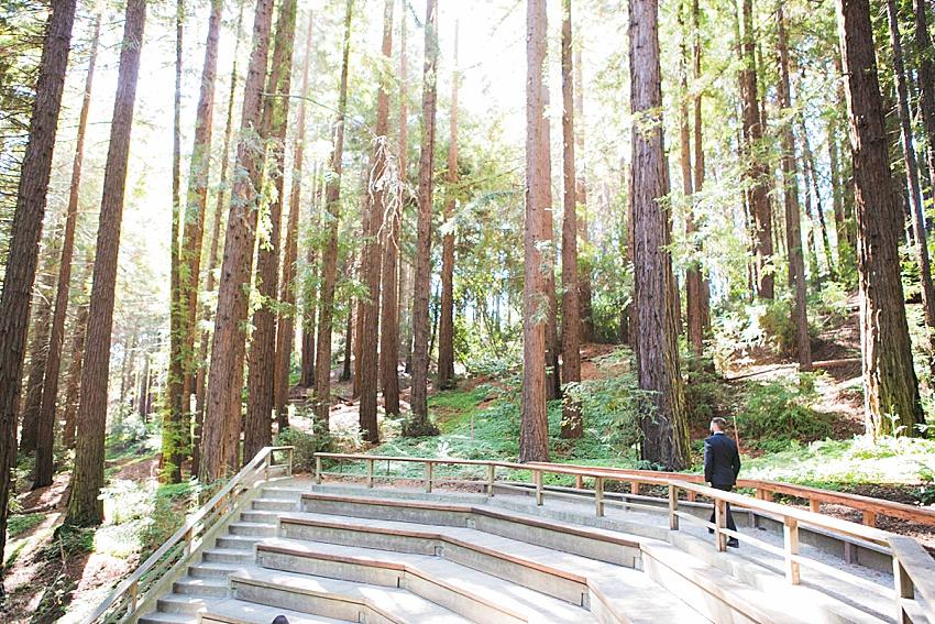 BerkeleyWeddingPhotography_SeattleWeddingPhotographer_0841.jpg