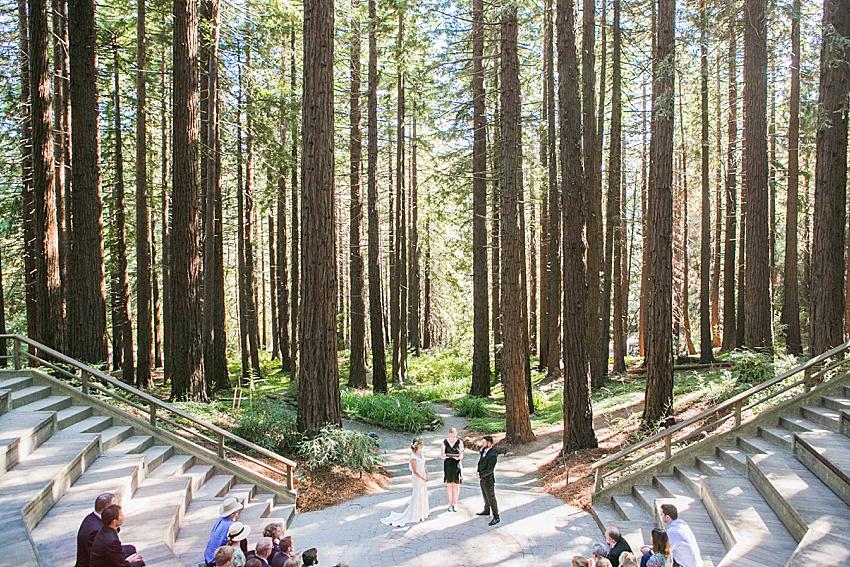 BerkeleyWeddingPhotography_SeattleWeddingPhotographer_0850.jpg